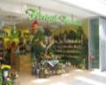 Ansicht des Geschäfts: Floristik Fantastic, Oder Center, Schwedt